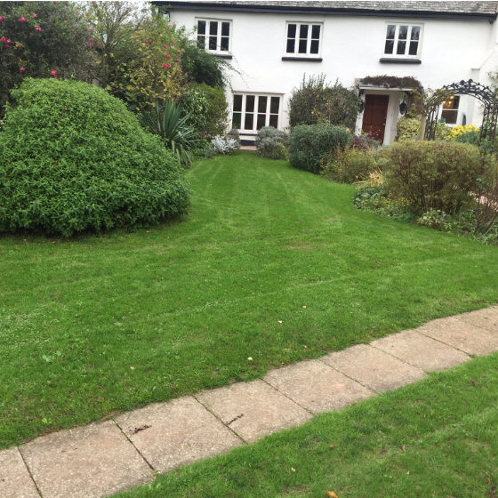 Lawn Rejuvenation – Spring/Summer