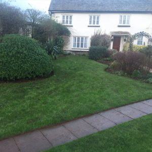 Lawn Rejuvenation – Autumn